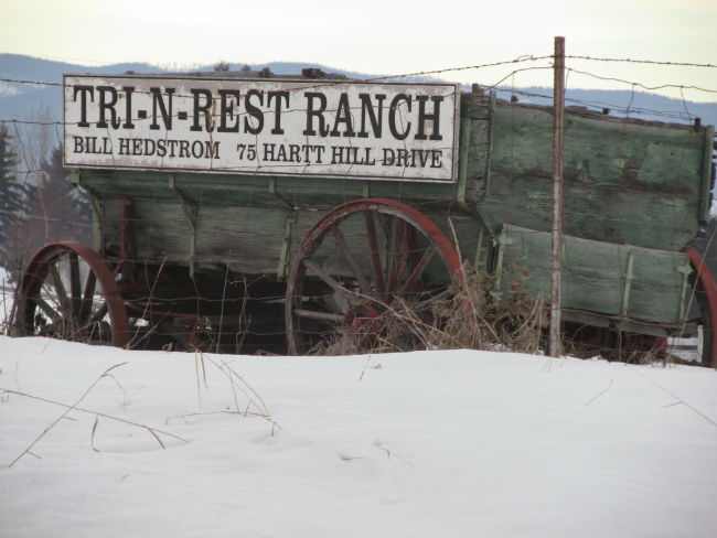 Try and Rest Ranch