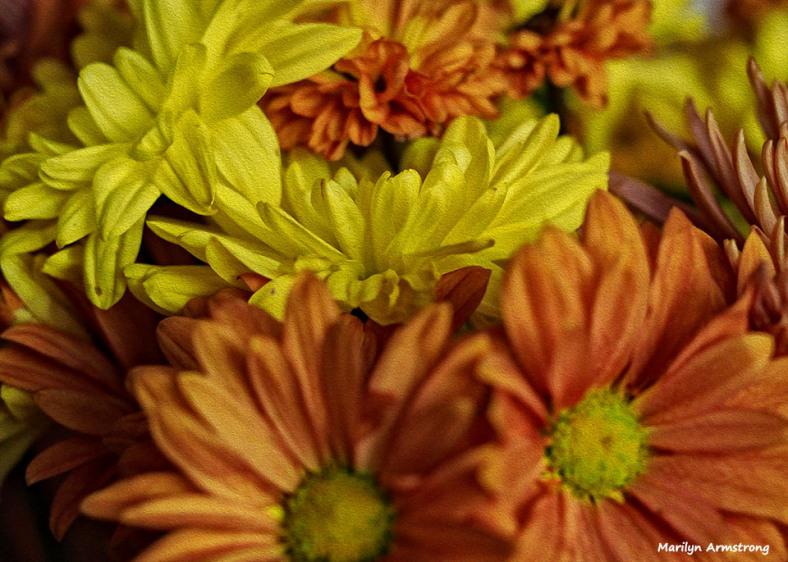 72-oil-autumn-bouquet_002